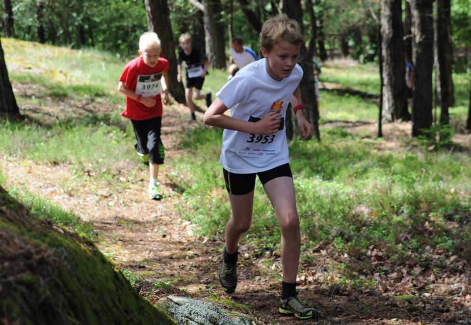 Flera löpare i rad på liten stig