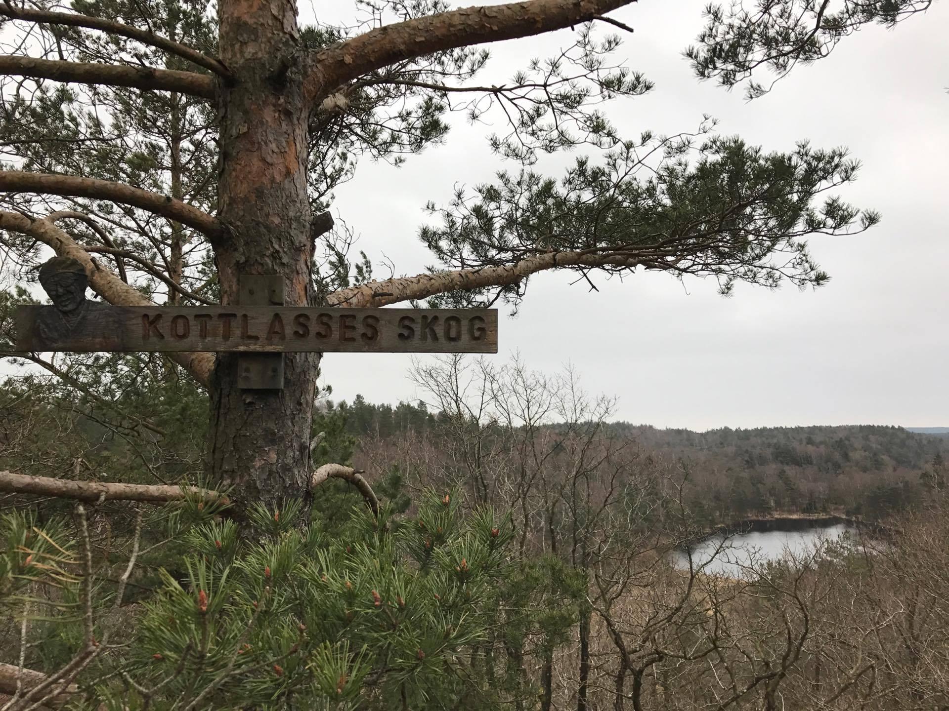 Kottlasses skog bänk, Skatås ryggar passerar