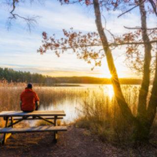 Boken Delsjön där stad och vildmark möts bild 1