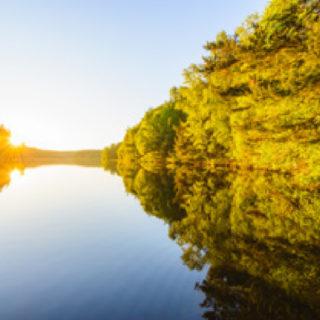 Boken Delsjön där stad och vildmark möts bild 2